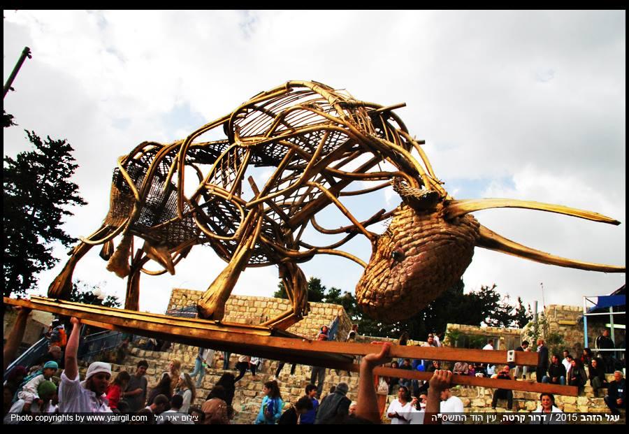 עגל הזהב 2015 עין הוד