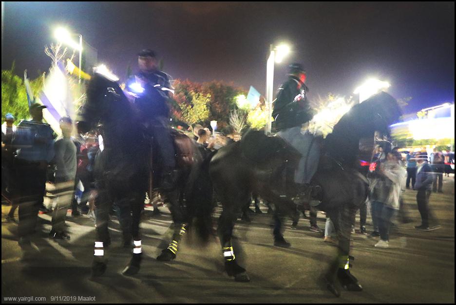 סוסי משטרה בדוקאביב