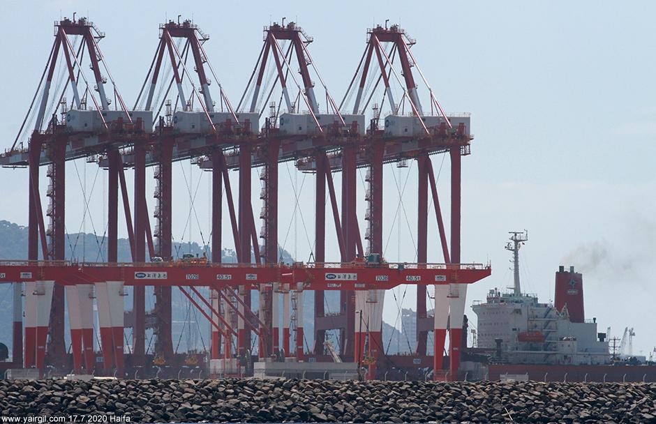 מנופי הנמל החדש