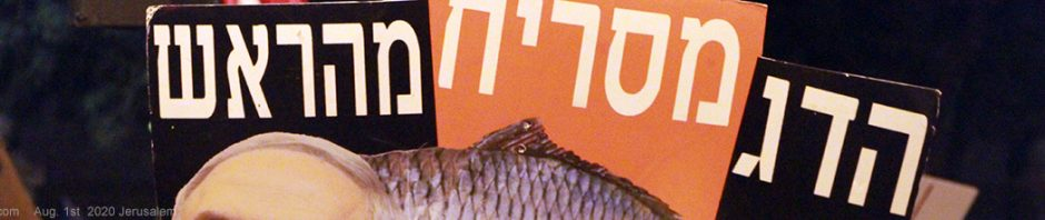הדג מסריח מהראש